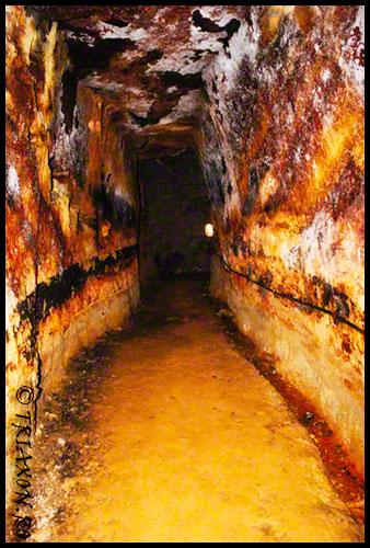 Rosia Montana - Minele romane - Alburnus Maior - Gold Corporation