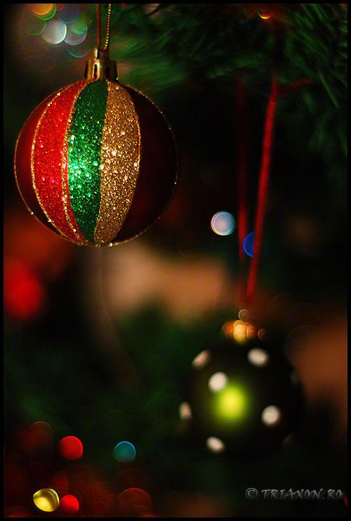Sarbatori fericite! Merry Christmas! Frohe Weihnachten! Feliz Navidad! Joyeux Noël! Feliz Natal! Buon Natale! С Рождеством христовым! メリークリスマス !חג המולד שמח Feliĉa Kristnasko! Boldog Karácsonyt! Baxtalo Krečuno!