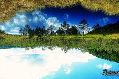 Tinovul Moho? - Lacul Sf. Ana - Harghita, România